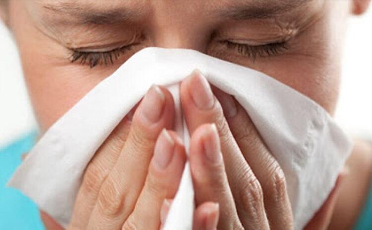 Diagnóstico y Tratamiento de la Rinitis Alérgica